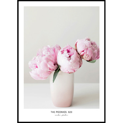 THE PEONIES. 820